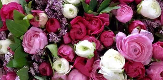 משק 25 פרחים